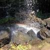 Waterfall @ Mount Elgon National Park UG & KE