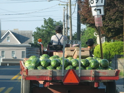 Watermelons On Their Way To A Farmers Market