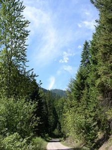 Water Ouzel Trail At Glacier - Montana - USA