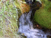 Water Ouzel Trail - Glacier - Montana - USA