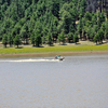Water Skiing On Upper Lake Mary