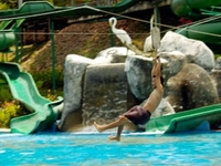 Water World Theme Park