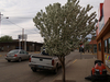 Watford City, North Dakota
