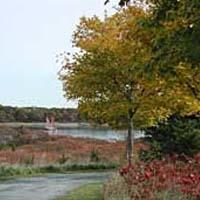 Webb Memorial