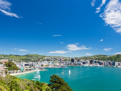 Wellington From Mount Victoria NZ