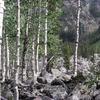 Weminuche Wilderness Aspen 2 0 1 0
