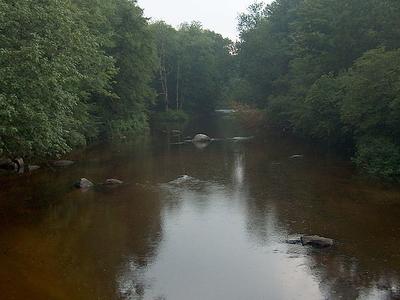West Branch Warner River