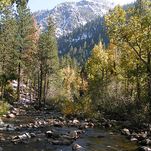 West Fork Of Carson River