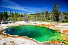 West Thumb Geyser Basin Trail - Yellowstone - USA