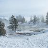 West Trail Geyser - Yellowstone - USA