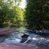 Wet Beaver Wilderness