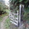 Whakahoro To Whanganui National Park Boundary - North Island - New Zealand