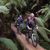 Whirinaki Forest Mountain Bike Track