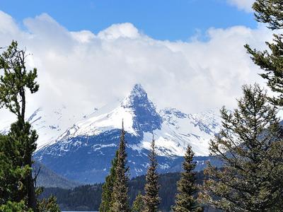White Calf Mountain - Glacier - USA