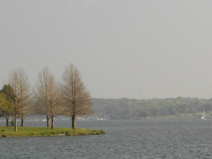 White Rock Lake