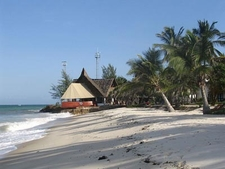 White Sand And Palm Trees Along Diani Beach