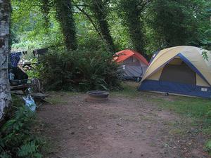 Willapa Bay Koa Campground