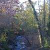 Willeo Creek