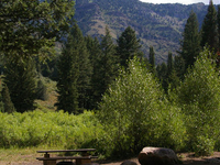 Caribou Willow Flat Campground