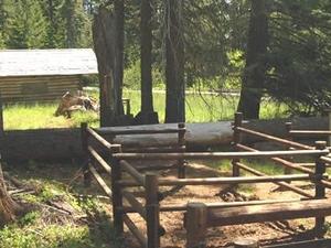Willow Prairie Horse Campground