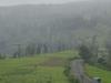 Wilson Hills Valley