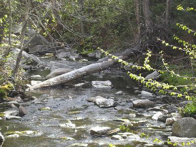 Winhall River