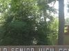 Winnfield  Senior  High  School