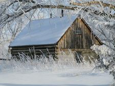 Winter At The Maltese Cross Cabin