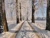 Winterland Boulevard - Southern Finland