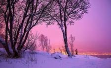 Winter View - Rondane NP