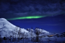 Winter With Northern Lights