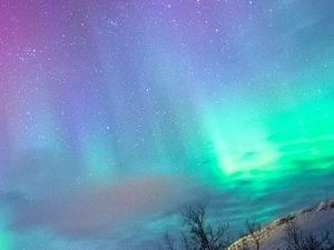 Winter Wonderland Experience Tour - Norway