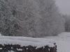 Wisconsin Winter Morning
