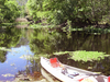 Withlacoochee River (central Florida)