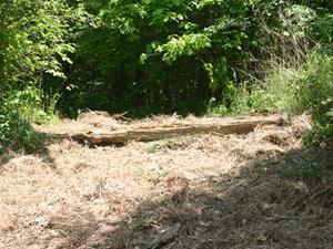 Wolf Pen Campground