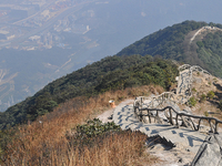 Wutong Mountain