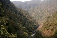 Wuyishan Nature Reserve