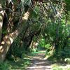 Wye Isla