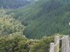 Waipatiki Reserve From The Road