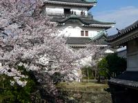 Castillo de Wakayama