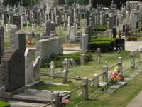 Washington Cementerio
