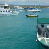 Water Taxi In Puerto Ayora On The Island Of Santa Cruz In The Galapagos