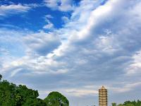 La Universidad de Pekín
