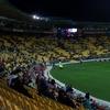 Westpac Stadium Crowd