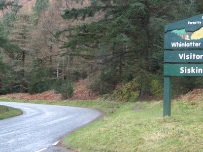 Whinlatter  Forest  Park  Sign