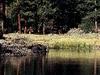 Whitehorse Lake View