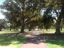 Whitmore Square View