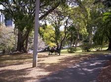 Wickham Park View