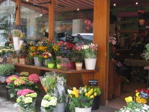 Viena mercado