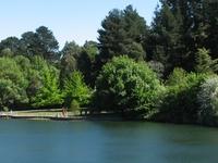Wilson Botanic Park